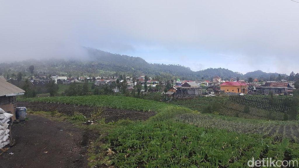 Terletak di Kaki Semeru, Begini Indahnya Desa Ranupani