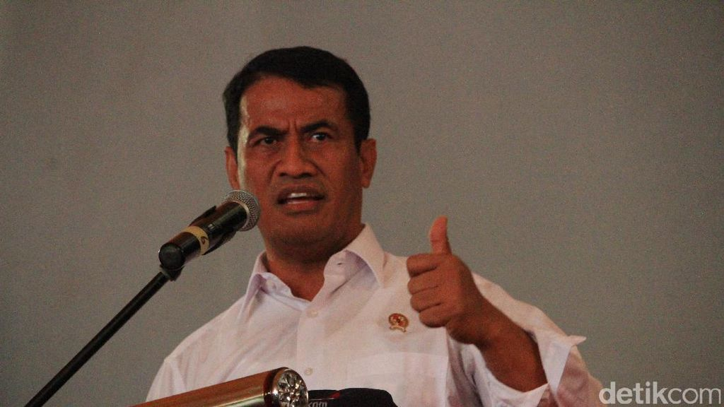 Di Depan Jokowi, Mentan Pamer RI Sudah Ekspor Kambing Hingga Babi