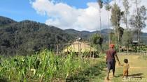 Foto: Kehidupan di Pedalaman Papua
