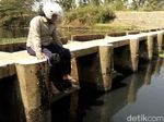 Atasi Pencemaran, Pemkab Jepara Akan Keruk Dasar Sungai Pecangaan