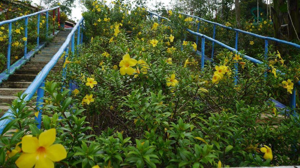Kebun Raya di Tengah Indonesia-Malaysia