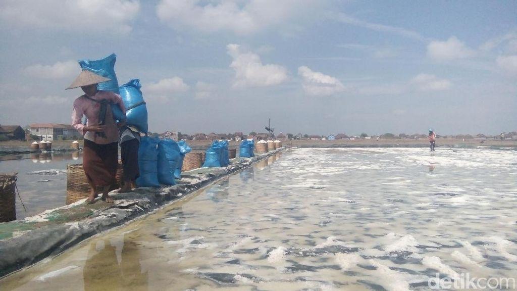 Produksi Garam Lokal Menumpuk Sejak Awal Agustus