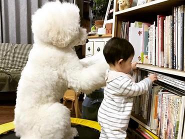 Hmm, buku mana ya yang mau dipilih? (Foto: Instagram/ @tamanegi.qoo.riku)