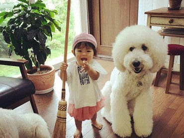 Mame mau ngajak anjing pudelnya bersih-bersih rumah ya? (Foto: Instagram/ @tamanegi.qoo.riku)