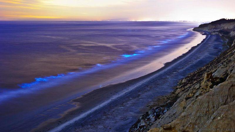 Lokasi pertama lautan bercahaya ada di Pantai Oceanside Pier, di Kota San Diego, negara bagian Southern California, AS. Di pesisir pantai ini, lautan yang seharusnya gelap di kala malam, warnanya berubah jadi pendar biru yang cantik (Alexander S Kunz/Getty/BBC Travel)