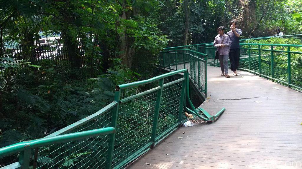 Dear Pemkot Bandung, Pagar Forest Walk Baksil Rusak Bahayakan Pengunjung