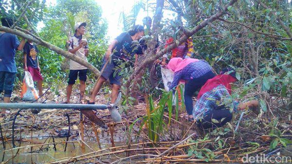 Bersih Sampah di Segara Anakan Kampung Laut Cilacap