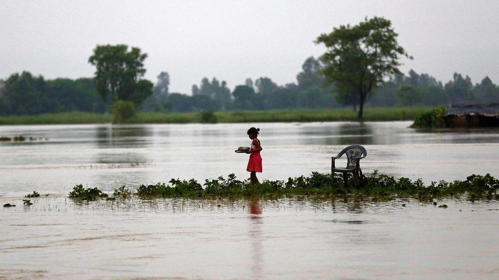 Gajah Bantu Selamatkan Turis yang Terjebak Banjir di Nepal
