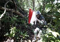 TNI Boleh Narsis di Medsos, Tapi Ada Aturannya