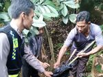 Petik Nangka, Warga Sukabumi Tewas Tersengat Listrik