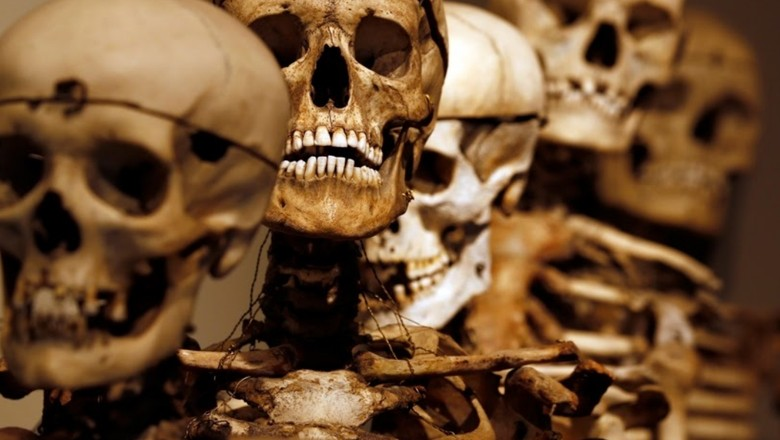 Foto: Koleksi Tengkorak dan Potongan Kepala Penjahat