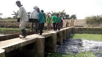 Hasil Laboratorium, Sungai Pecangaan Jepara Tercemar Ringan