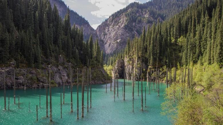 Foto: Lho, Danau Isinya Hutan
