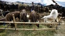 Pemkot Bekasi Larang Jual Hewan di Trotoar dan Kawasan Adipura