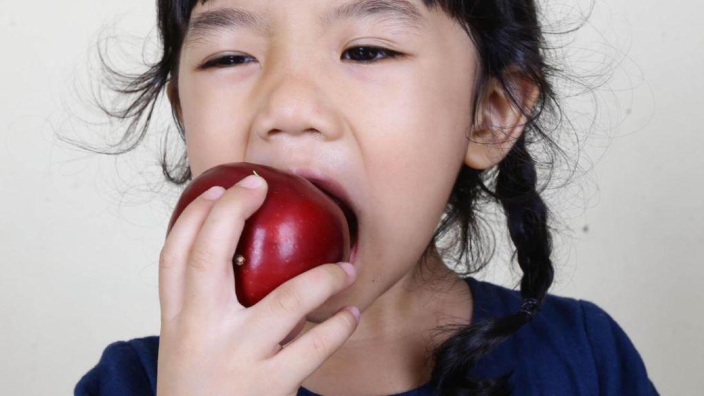 Sudahkah si Kecil Makan Buah Tiap Hari?