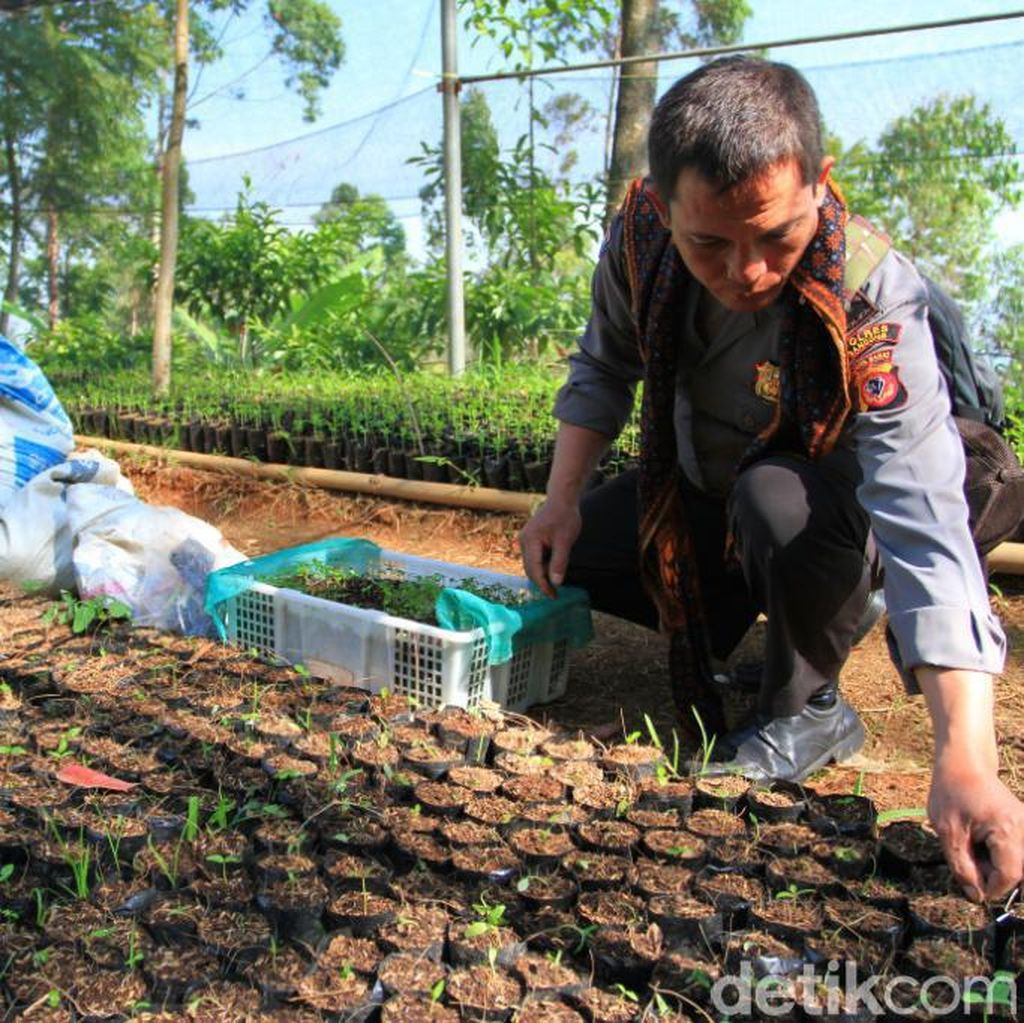 Bah Nunuh, Polisi di Bandung yang Dijuluki Manusia Pohon