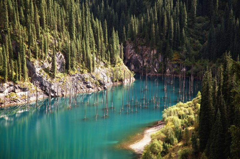 Danau unik ini bernama Danau Kaindy, berada di Pegunungan Tian Shan, Almaty, Kazakhstan (Thinkstock)