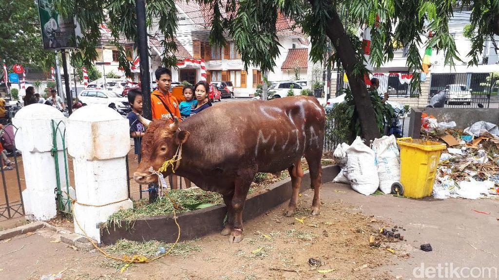 Megawati Berkurban Sapi di Masjid Cut Meutia