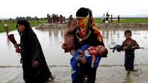 Kekayaan Rakhine, Kota Rohingya yang Tersandera Konflik