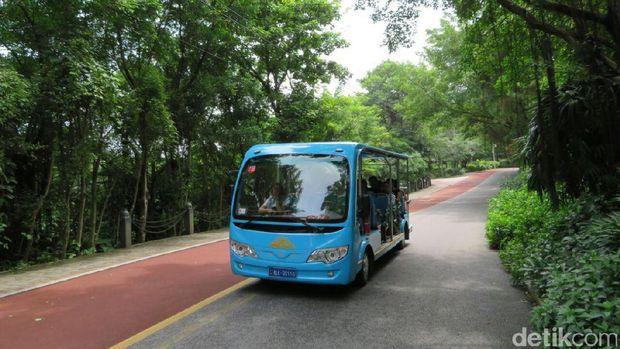 Suasana Kota Nanning yang  bebas kendaraan bermotor dengan bahan bakar BBM