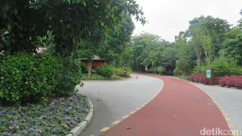 Taman Qingxiu, Bukit Indah yang Ada di Tengah Kota Nanning