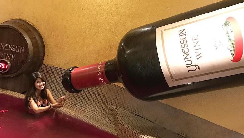 Foto: Kolam wine di Hokane Jepang (Instagram/ppthiri)