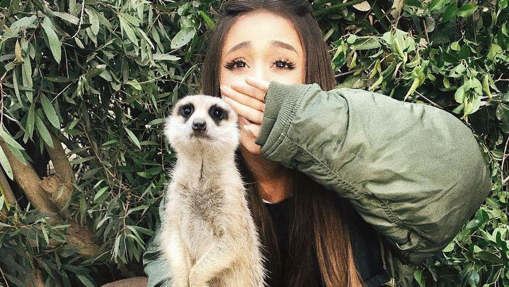 Ariana Grande Main ke Kebun Binatang, Begini Ekspresinya