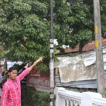 Pemuda Depresi di Kebumen Ini Panjat Tiang Lalu Pegang Kabel Listrik