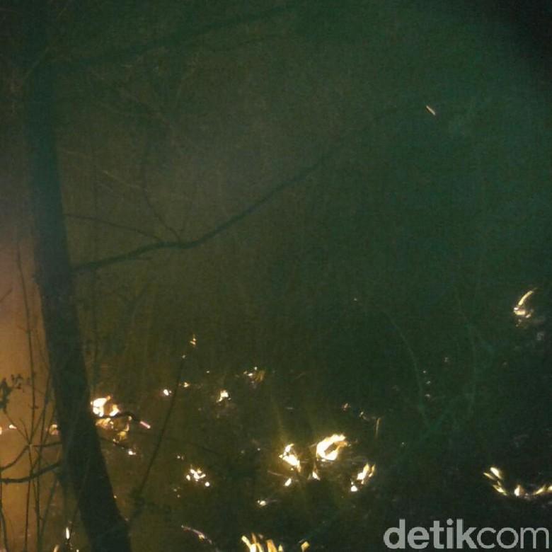 2 Hektare Lahan di Gunung Cikuray Garut Hangus Terbakar