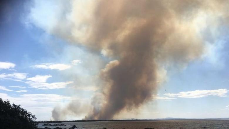 Kebakaran New South Wales: 500 Siswa Dievakuasi dari Sekolah