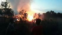 Kebakaran Lahan di Sumsel Kian Mengkhawatirkan
