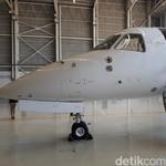 Mau Terbang Pakai Jet Pribadi? Begini Caranya