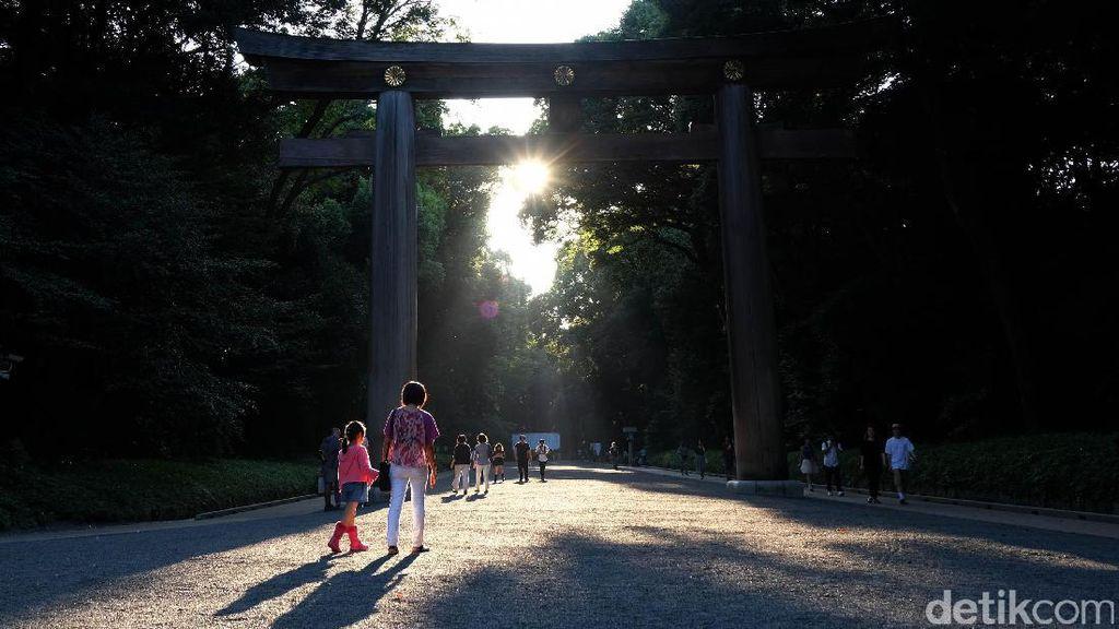 Mencari Kedamaian di Tengah Hiruk Pikuk Tokyo, Ini Tempatnya