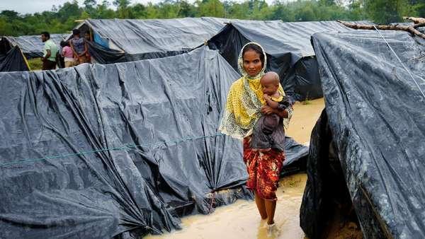 2 Pengungsi Rohingya di Bangladesh Tewas Terinjak Gajah Mengamuk