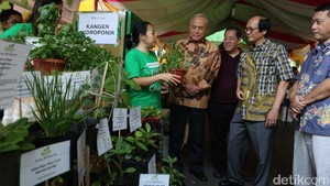 Melihat Ajang hydroponic Expo
