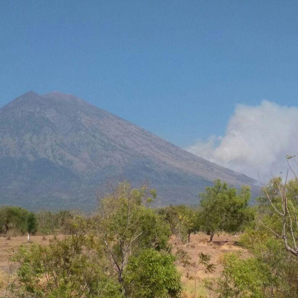 Kebakaran Hutan di Gunung Agung Meluas Jadi 11 Titik
