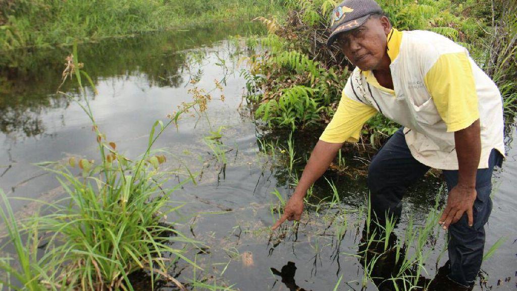 Warga Ungkap Isi Dialog dengan Buaya yang Mangsa Suprianto di Riau