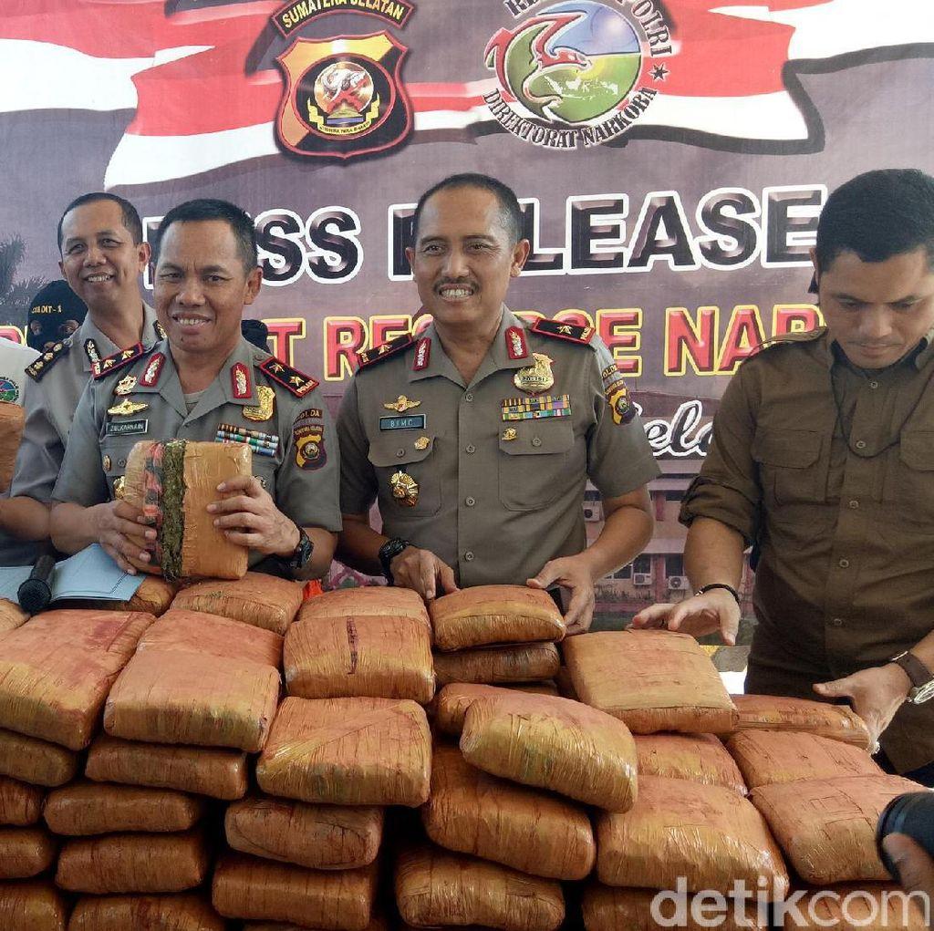 Polisi Gagalkan Pengiriman 277 Kg Ganja Lewat Jasa Kargo