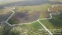 Hotspot di Kalimantan Barat Terpantau Meningkat