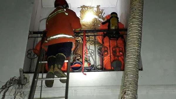 Damkar Evakuasi Sarang Tawon yang Penuhi Jendela Rumah di Tebet