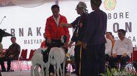 Pelihara Kambing Sendiri, Jokowi: Untungnya Gede Juga