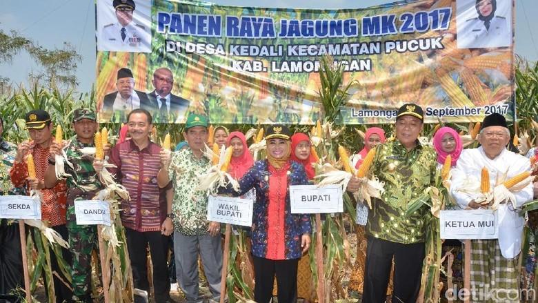 Hadiri Panen Raya di Ketua - Lamongan Majelis Ulama Indonesia mendukung upaya pemberdayaan sektor MUI sudah mengikat kerja sama dengan perusahaan untuk memberdayakan umat