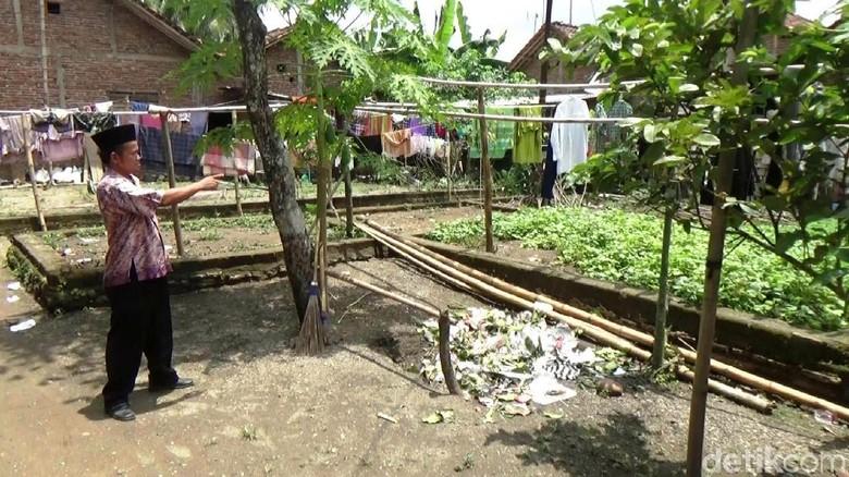 Rumah Letkol Untung di Kebumen - Kebumen Pekarangan dengan luas meter persegi dan hanya ditumbuhi ketela rambat di Dusun Kedung RT RW Desa Kecamatan