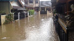 Penyakit yang Sering Muncul Saat Banjir