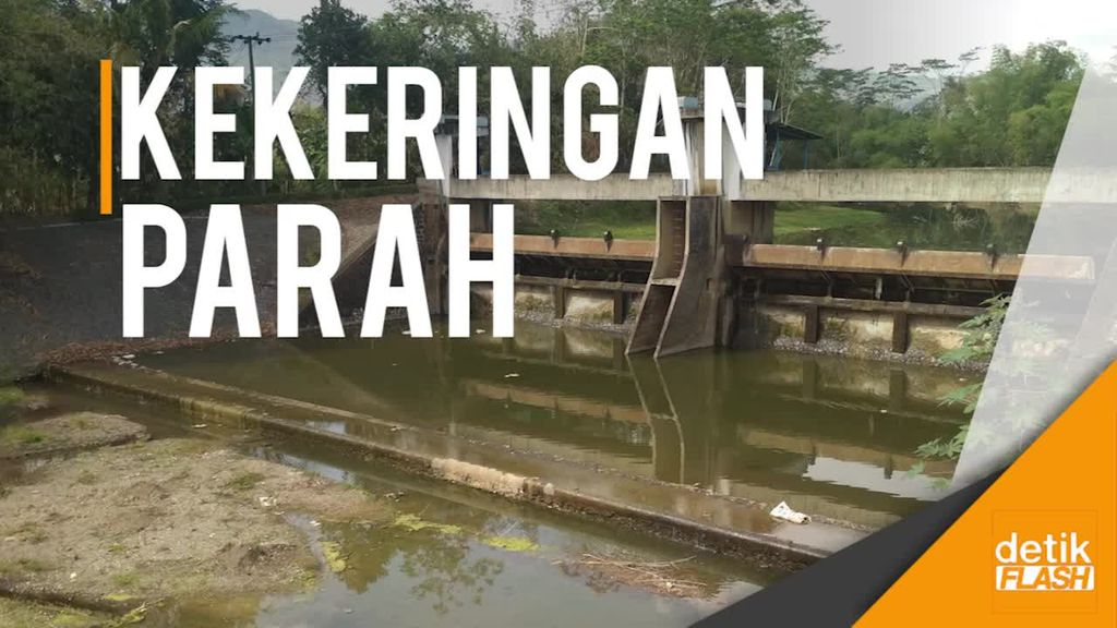 Kemarau, Debit Air di Sejumlah Sungai Trenggalek Turun Drastis
