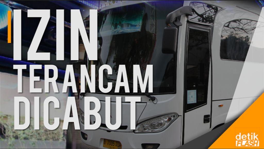 Menhub Soal Bus Party: Kalau Lampaui Batas, Izin Dicabut