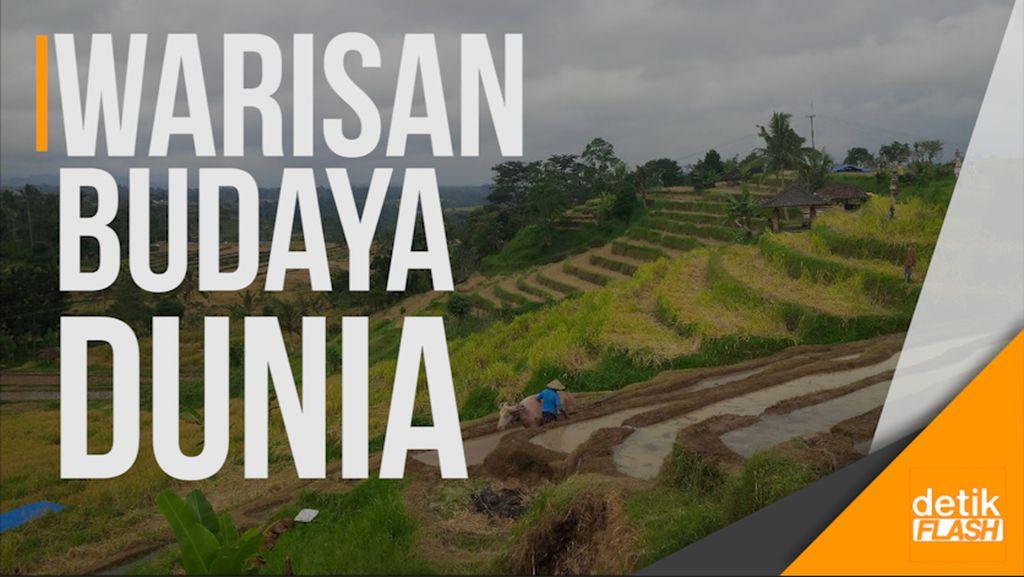 Hari Ketiga di Bali, Obama Singgah ke Terasiring Tabanan