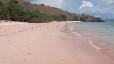 Ini Pantai Pink Tersembunyi di Pulau Komodo