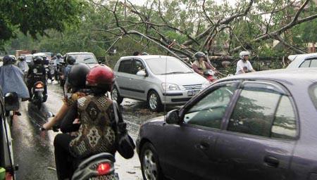 Yogyakarta Dihempas Puting Beliung