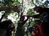 Beberapa anak memberi makan seekor jerapah di Kebun Binatang Ragunan.
